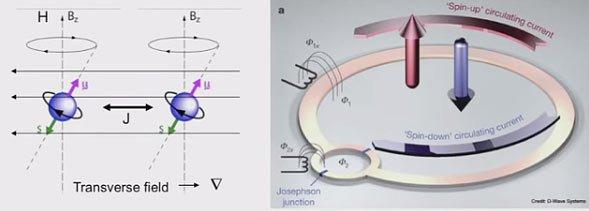 Kvantni kjubit, u realizaciji D wave
