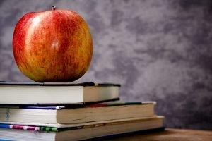 Offline i online obrazovanje
